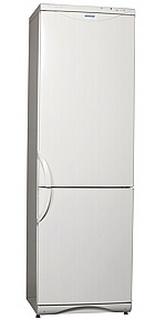 Холодильник Snaige  RF360-1801A - 303